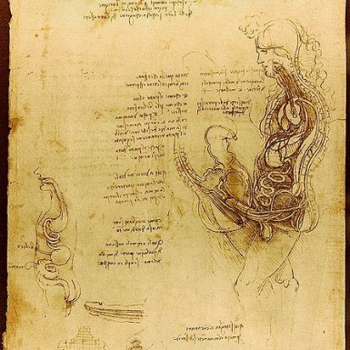 https://commons.wikimedia.org/wiki/File:Da_Vinci_Coition_of_a_Hemisected_Man_and_Woman_Luc_Viatour.jpg Public domain. Wikimedia Commons ©