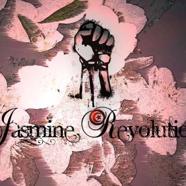 https://commons.wikimedia.org/wiki/File:JasminRevolution.png Creative Commons Attribution-Share Alike 4.0 International, 3.0 Unported, 2.5 Generic, 2.0 Generic and 1.0 Generic license ©